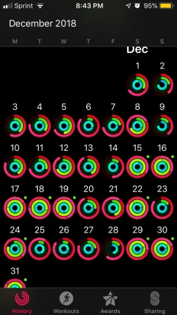 december activity level