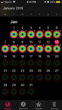 january activity level