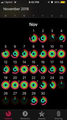 november activity level